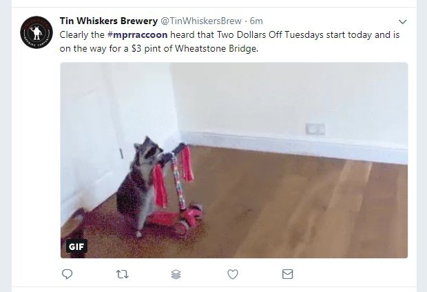 Tin Whiskers Brewery marketing with the #MPRraccoon hashtag