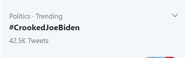 "MAGA Cultists & Bots: Trending Twitter topic, ""#CrookedJoeBiden"""