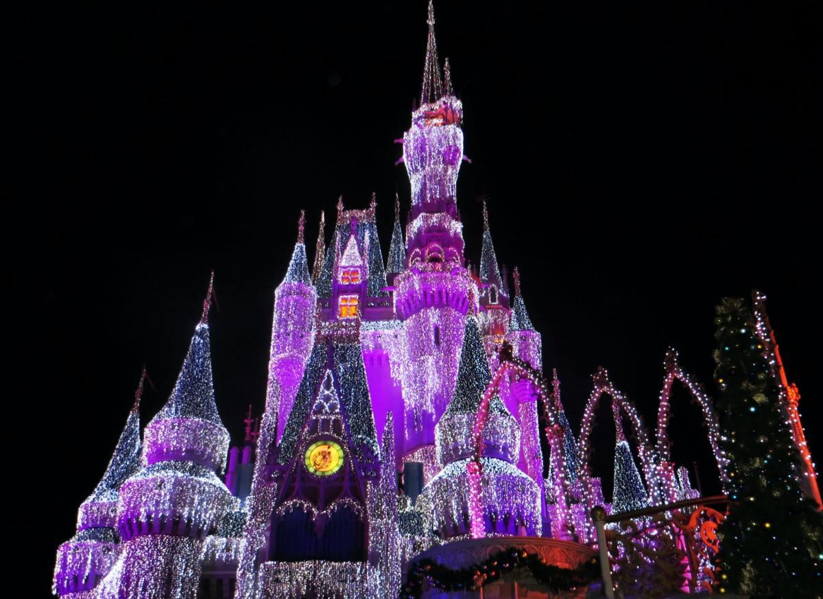 Pexels - Magic Kingdom, Disney